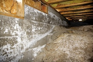 Crawl Space Restoration Albany OR