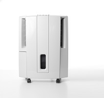 Quiet dehumidifier Salem
