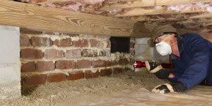 Insulation Removal in Newport by The Killers Crawl Space Restoration